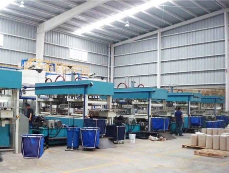 Оборудование для производства бугорчатой тары (термоформовочное)